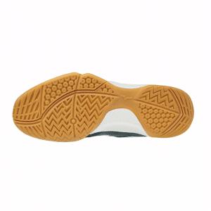 MIZUNO 美津濃 WAVE SMASH 5 羽球鞋